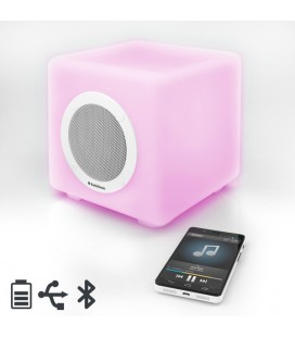 Enceinte Bluetooth LED AudioSonic SK1539